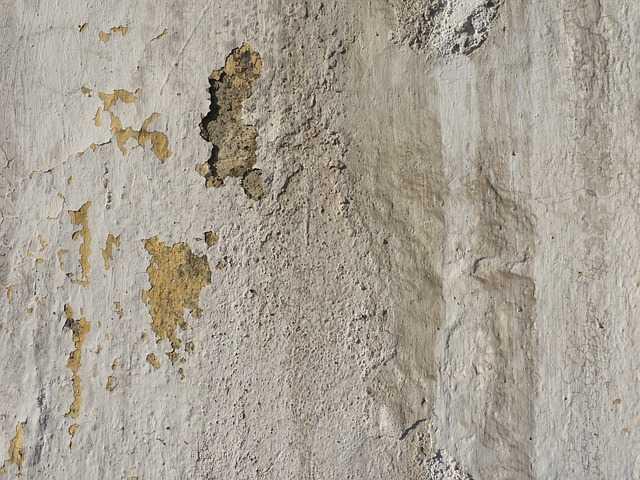 Peeling Wall