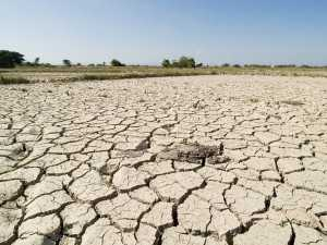 Drought Impact