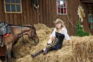 Horse's Hay
