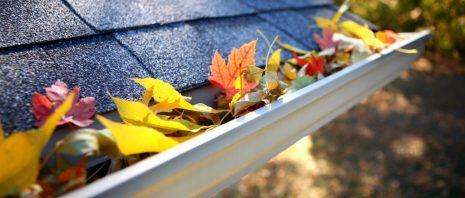 Roof gutter full of autumn leaves