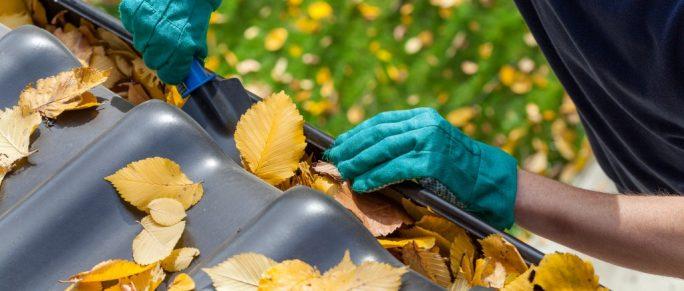 Man wearing gloves cleaning rain gutter